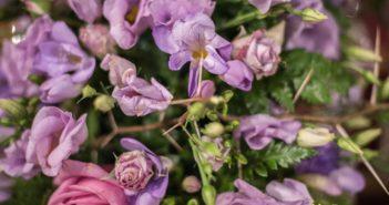 Detalles florales en el Triduo a Nuestro Padre Jesús del Prendimiento